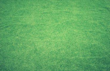 La pelouse artificielle: un revêtement de jardin de qualité